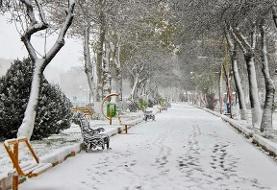 بارش نخستین برف پاییزی در تهران/ هوای پایتخت سالم است