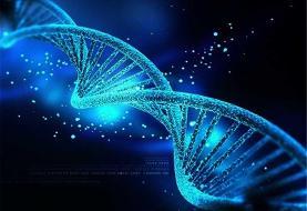 تاثیر ساختار ژنتیک شما به میزان مقاومتتان نسبت به درد چقدر است؟!
