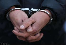 جزئیات بازداشت یکی از عوامل شبکه نفوذ امنیتی - اقتصادی پس از ورود به کشور