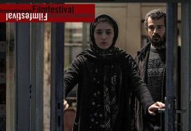 یک جایزه آسیاپاسیفیک برای برادران محمودی