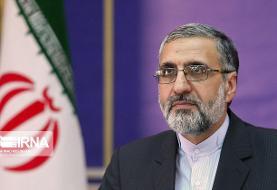 سخنگوی قوه قضاییه: ۱۰۰ نفر از لیدرها و عوامل اصلی ناآرامیها توسط سپاه دستگیر شدند
