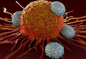 سرطان پوست از فولیکولهای مو شروع میشود