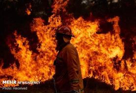 ۳ کشته و ۴ مجروح در آتشسوزی کارگاه ضایعاتی