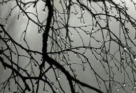تداوم بارندگیها در کشور تا چهار روز دیگر