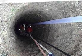 آتشنشانان سگ بی پناه را از اعماق چاه نجات دادند