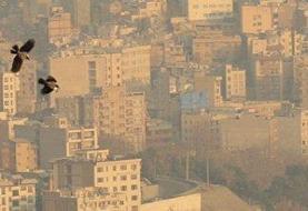 آلودگی هوا تیتر اصلی هیچ کدام از روزنامه ها نیست