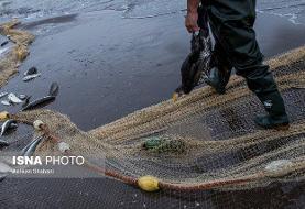 عکس/ آلودگی دریای خزر؛ زنگ خطر جدی برای ایران