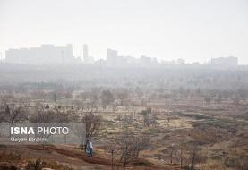 درخواست دو نماینده برای حل مشکل آلودگی هوا