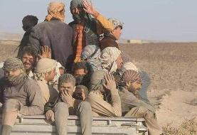 ماجرای اندوهناک افغانکِشهای افغانکُش