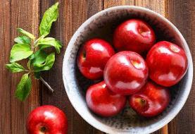 تولید سیبی که تا یک سال تازه میماند