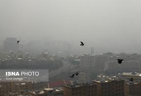 اخطاریه هواشناسی درباره تشدید آلودگی هوای تهران و چهار شهر دیگر