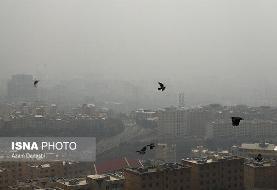 ۳هزار مرگ در تهران به دلیل آلودگی هوا در سال گذشته