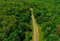 مراقبت از جنگل&#۸۲۰۴;ها تعطیل نمی&#۸۲۰۴;شود