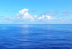 کاهش بیسابقه اکسیژن اقیانوسها   کوسه، ماهی تن و نیزهماهیها در معرض خطر