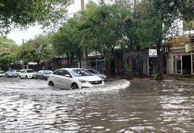 داستان تکراری باران و آبگرفتگی در بوشهر | خودروهایی که غرق میشوند