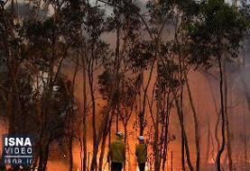 ویدئو / آتش در استرالیا، «اَبَر حریق» شده است