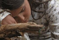 «نفس» از جشنواره سیاتل جایزه گرفت
