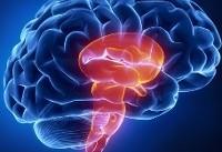 چگونه در عصر جدید، با مغز به جا مانده از ۱۰۰ هزار سال پیش زندگی کنیم؟