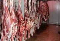 دستگیری مظنونان فروش گوسفند مرده در شیراز