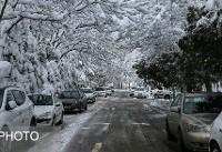 آخرین وضعیت جوی کشور/ تداوم بارش برف در ارتفاعات