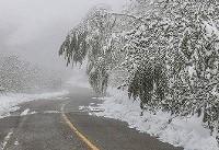 تداوم بارش برف در ارتفاعات