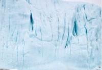 چرا تومور مغزیام را 'به قطب جنوب فرستادم'