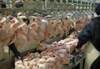 تکذیب ذبح نامناسب و غیر شرعی مرغ