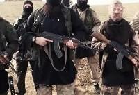 وزارت اطلاعات ایران از بازداشت «۱۳ نفر از عناصر داعش» در کردستان خبر داد