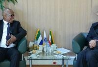 دعوت از بخش خصوصی ایران برای سرمایهگذاری در غرب آفریقا