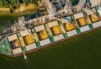 جنگ تجاری صادرات دانه سویای آمریکا به چین را ۹۰ درصد کاهش داد