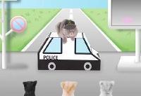 ژاپنی ها برای گربه ها ویدئوهای آموزشی عبور از خیابان ساختند