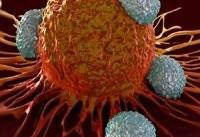 ۶ داروی درمان سرطان تا پایان سال رونمایی می&#۸۲۰۴;شود