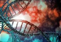دستگاه تکثیر ژن توسط پژوهشگران دانشگاه شریف ساخته شد