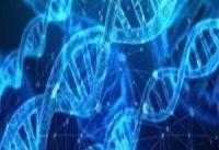 ساخت دستگاه تکثیر ژن با قیمتی معادل یک دهم نمونه خارجی