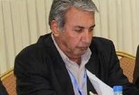 شوراهای حل اختلاف توفیقی در تقلیل دعاوی یا حل سریع اختلافات نداشتهاند