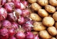 ممنوعیت صادرات پیاز و سیبزمینی لغو شد