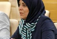 احزاب در ایران شالوده فکری مشخصی ندارند