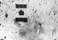 ژاپن وجود آب در سطح سیارک ریوگو را تایید کرد