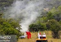 هشداری به گردشگران؛ زندان در انتطار عاملان آتشسوزی در جنگلها