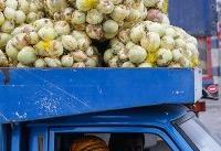 جهاد کشاورزی: پیاز ۲روز دیگر ارزان می شود/ تعطیلی میادین میوه، دلیل افزایش قیمت