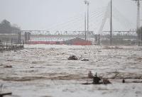 سیلاب اخیر ارتباطی با کاهش پوشش گیاهی جنگلی ندارد