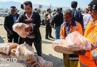 معاون وزیر رفاه جهت بسیج امکانات برای کمک به سیلزدگان عازم گلستان میرود