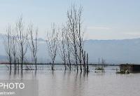 هشدار هواشناسی نسبت به وقوع سیلاب و طوفانی شدن دریا