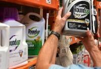 Toxicologist denies manipulating studies in Monsanto damages proceedings