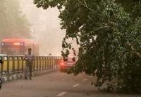 تکذیب شایعه سازی عضو شورای شهر: وقوع طوفان در تهران صحت ندارد