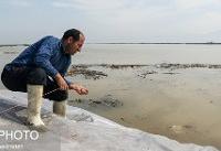 آب در معابر شهر آققلا در حال فروکش است