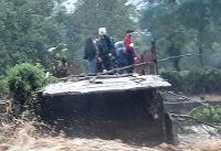 دستور تخلیه سه شهرک اندیمشک در پی خطر سیلاب