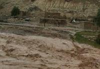 رانش زمین یک روستا در بویراحمد را بلعید