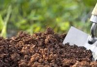 اجرای طرحی برای افزایش سهم کود زیستی در کشاورزی