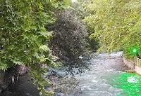 هشدار هواشناسی تهران؛ در حاشیه رودخانهها اطراق نکنید | بارش در راه است